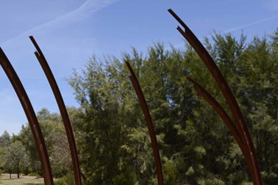 A Brief History Of The Act Canberra Bushfire Memorial